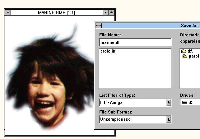 Amiga Video