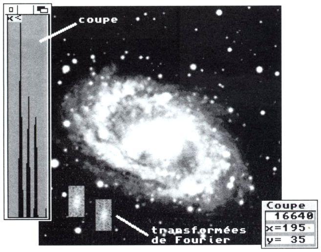 Amiga à l'Observatoire de Paris-Meudon