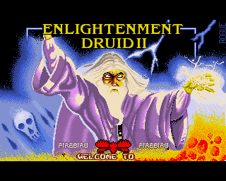 Enlightenment: Druid 2
