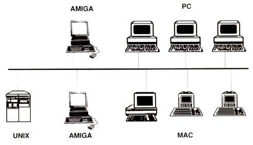 réseau Amiga